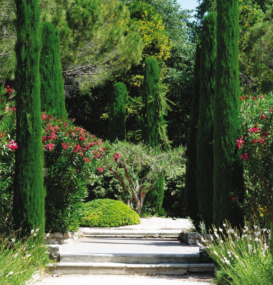Faire appel une entreprise du paysage sud paysage for Entretien jardin locataire