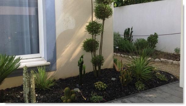 Réaménagements d'un jardin complet - Massif