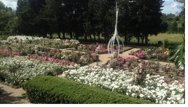 La roseraie, avec au centre l'oeuvre d'art de Mr Guiran