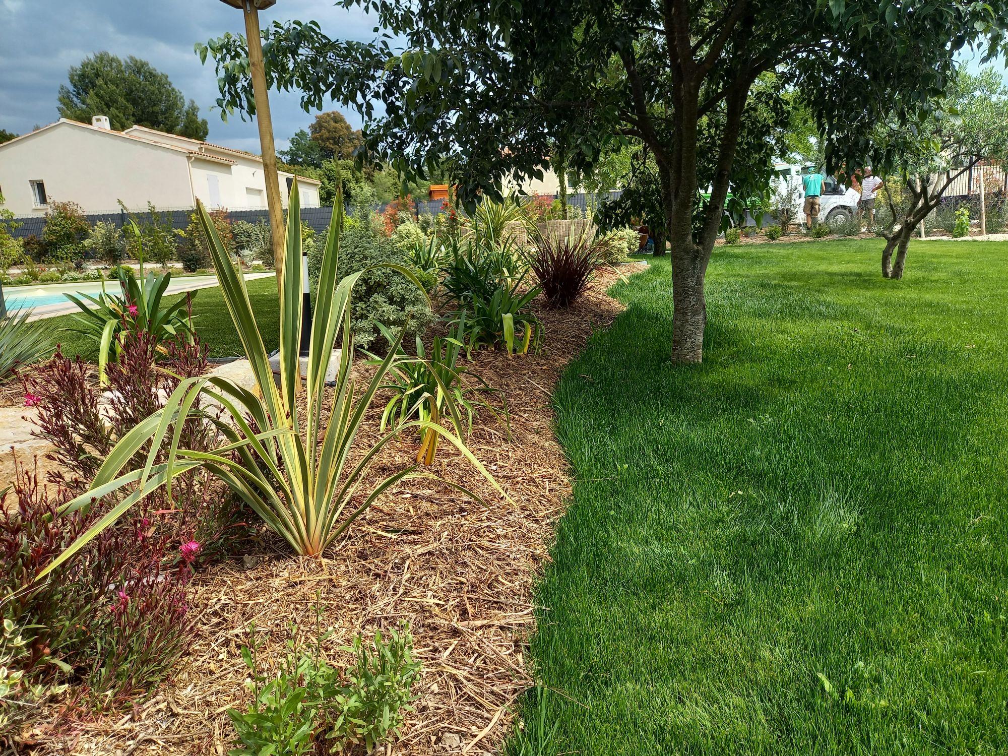 Création d'un véritable jardin contemporain avec brise vue végétal